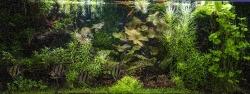 400 liter akvarium