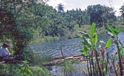 Parti fra Lake Gatun