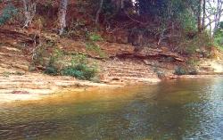 Rio Cañita  her fangede jeg Geophagus Crassilabris