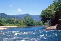 Rio Guarumo