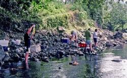 Rio Guarumo Her skiftes vand på vores fisk