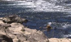 Rio Santa Maria