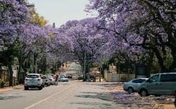 Parti fra Pretroia Sydafrika