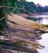 Rio Inirida I tørtiden , her kan man se de forskellige vandhøjder