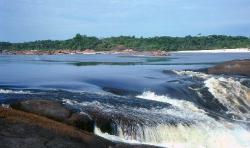 Rio Iniridae