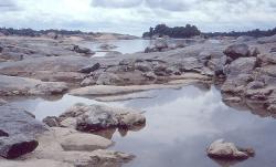 Rio Orinoco