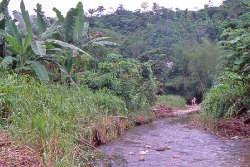 Biotop nær Quinente