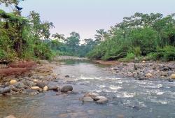 Biotop Rio Anzu