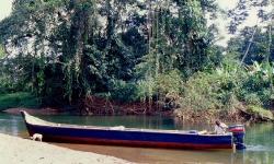 Canoen vi sejlede over Laguna De Chiriqui til Rio Cricamola
