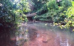 Rio Friolito