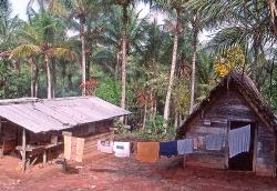 Djomongo her boer vi i nogle dage