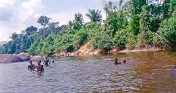 Surinam River